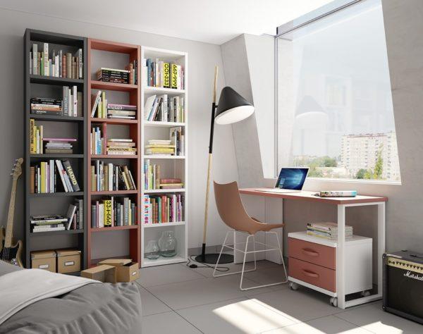 """Habitación Juvenil """"Tengo Muchos Libros"""""""